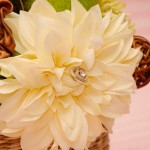flori in cos cu capac