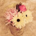 flori in ghiveci vintage